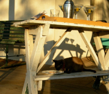martinis, sunset, poached salmon for the small brown cat.