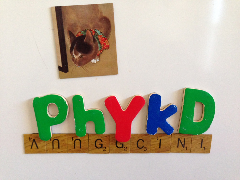 My daughter has a remarkable grasp of phonetic spelling. This week has indeed been totally phykd.
