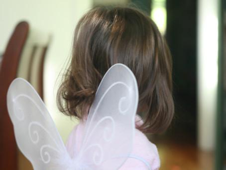 Secret Fairy Business
