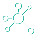 noun_networking_2561284-01.png