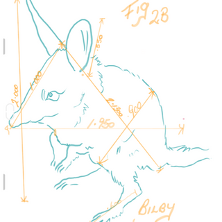 Concept of Bilby