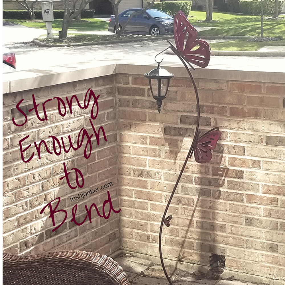 Strong Enough to Bend Flexible Parenting Tips