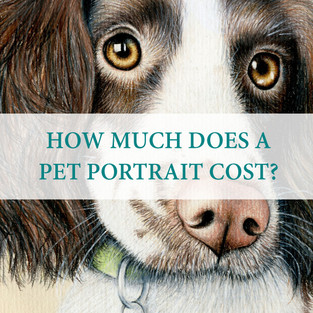 My pet portrait prices range from £65 to £300+ depending on the size. I strive for luxurious yet affordable artwork from pet portraits to fine art prints of my work. Custom sizes are also available, just ask me for a quote!