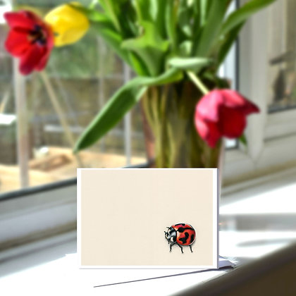 Ladybird Greetings Card