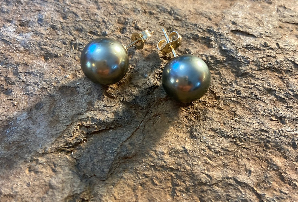 Tahitian Pearl Stud Earrings (Gold Filled)