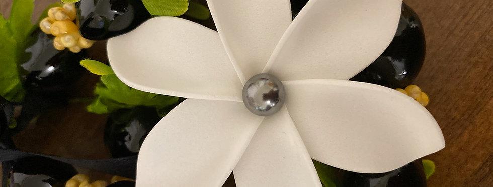 Plumeria Mother of Pearl Flower