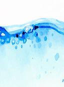 water based defoamers, antifoam y30, antifoam, sigma antifoam, dow antifoam, dow corning antifoam, antifoam y 30, antifoam y 30 emulsion, Antifoam Y-30 emulsion, antifoam y-30