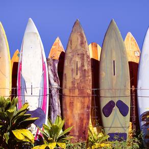 COWABUNGA!!! Hawaii Travel Guide