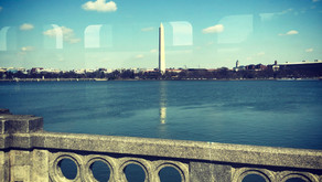 What to visit in  D.C ?!!