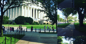 The Insider's Guide to When to Visit Dc