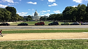 d.c g guided tours
