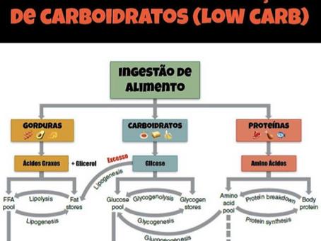 Massa Magra e dieta com restrição de Carboidratos