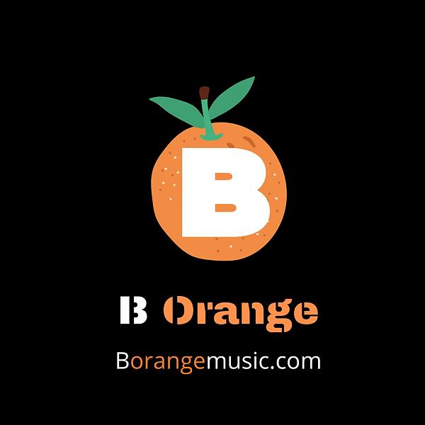 Borange Logo (2).png