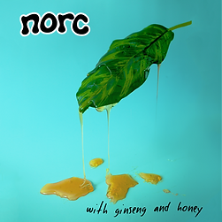 norc ep cover with ginseng and honey arizona