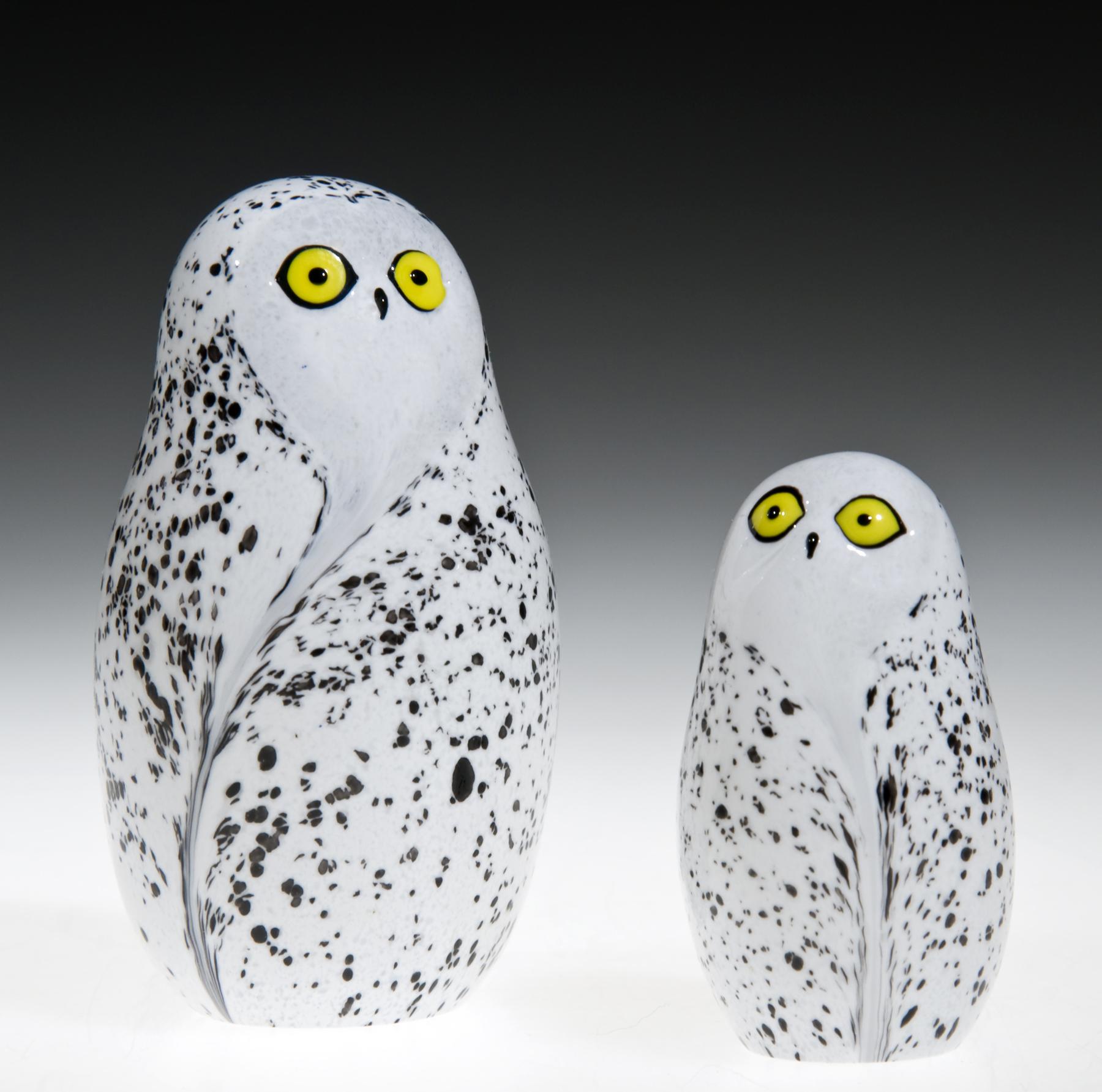 snowy owls.jpg