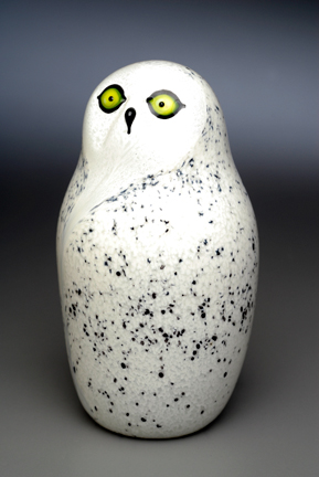 Snowy Owl CF.jpg