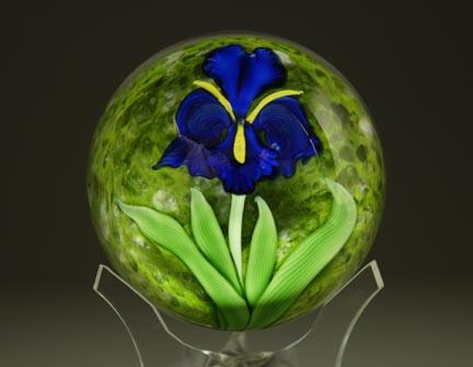 Cobalt Iris over Green Orb CFweb.jpg