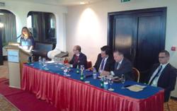 Mirna Marovic speaking