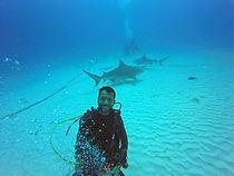Santiago diving.jpg