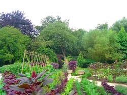 Tunbridge Wells  Gardening