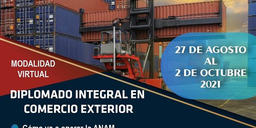 Diplomado Integral en Comercio Exterior