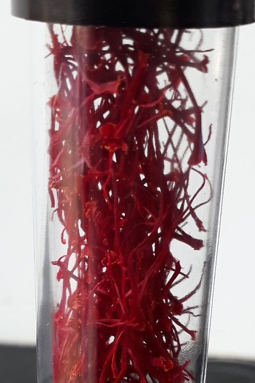 Saffron Threads (0.5 grams) Premium Grade 1
