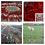 Thumbnail: Saffron Threads (20.0 gram) 2020 Harvest Season