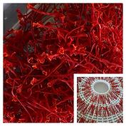 2020 Harvest Saffron.png