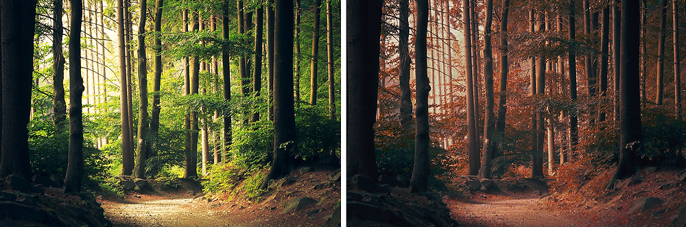Two copies of the same image made to look like different seasons using Photoshop.
