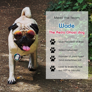 Image designed for a blog post about the Retro Ghost Dog.