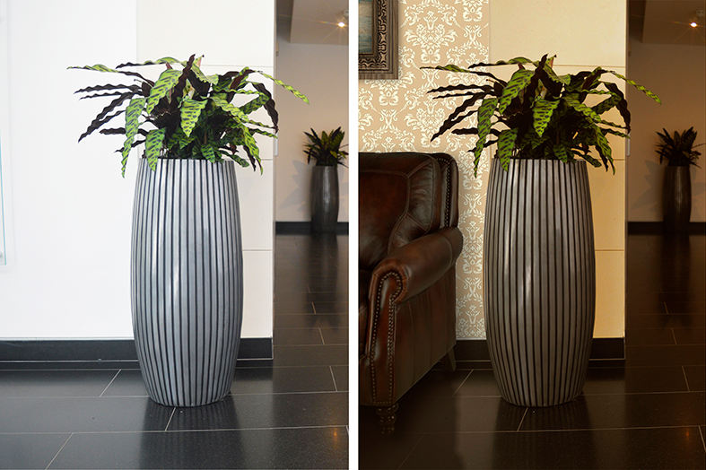 Two images of plants in an office building, one has been changed to look like a hotel using Photoshop.