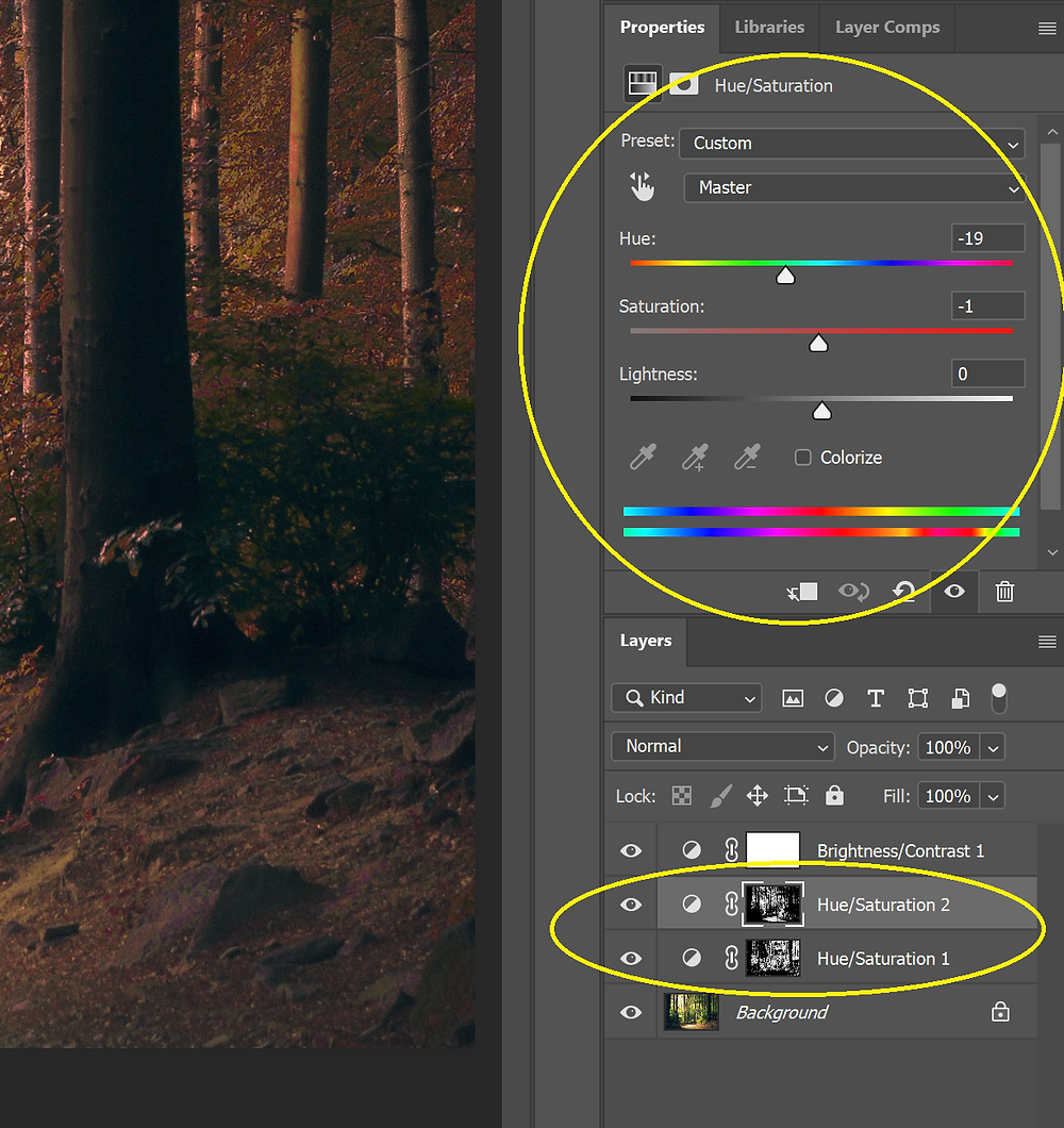 Screenshot of the Saturation and Vibrancy toggles used in a Hue/Saturation layer in Photoshop.