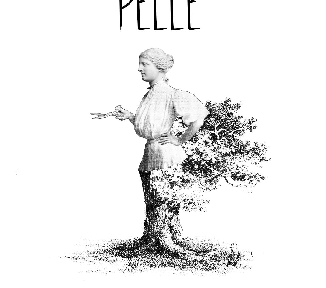 MATERA - Pelle