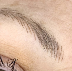 brows17