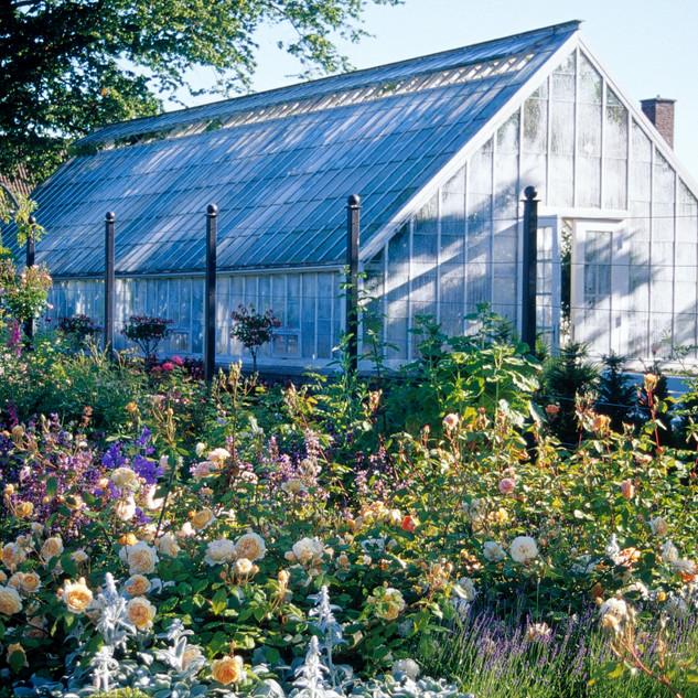 Växthus på Sofiero
