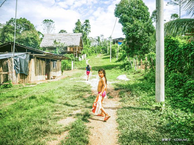 第五话|28 Crazy Days in Amazon/亚马逊雨林,人类最荒诞的狂欢