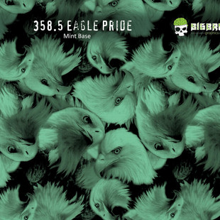 358-Eagle-Pride-Bald-Eagles-American-Ame