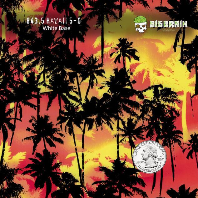 843-Hawaii-Hawaiian-Island-Islander-Trop