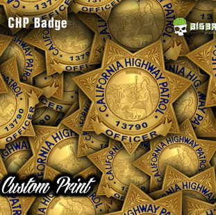 CHP Badge.jpg