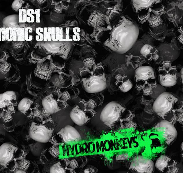 DS1-Demonic-Skulls-Hydrographics-Film-Hy