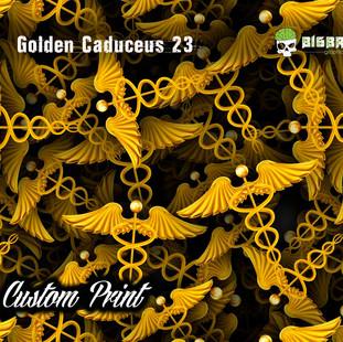 Golden Caduceus 23.jpg
