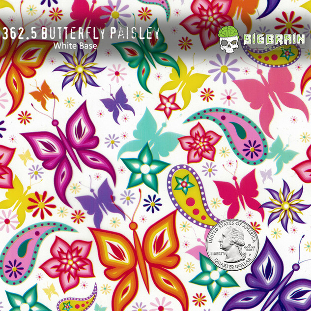 362-Butterfly-Paisley-Colorful-Girly-Kid