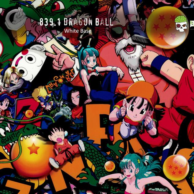 839-Dragon-Ball-Z-Cartoon-Japanese-Hydro