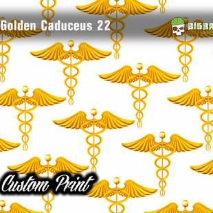 Golden Caduceus 22.jpg