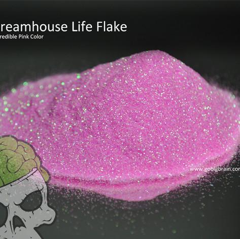 Dreamhouse Life (95209).jpg