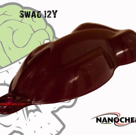 Swag 12Y Big Brain Graphics NanoChem Pai
