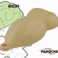Biscuit Beige Big Brain Graphics NanoChe