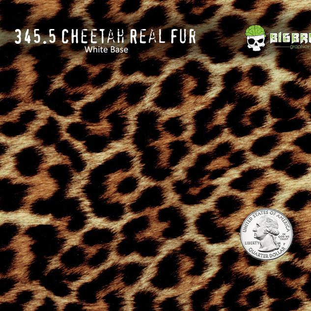 345-Cheetah-Real-Fur-Cat-Hydrographics-F