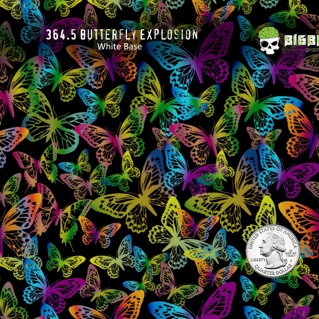 364-Butterfly-Explosion-Colorful-Bright-