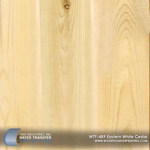 WTP-489 Eastern White Cedar.jpg